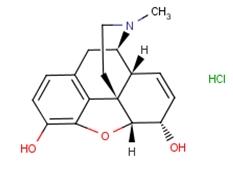 52-26-6 morphine hydrochloride
