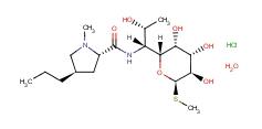 Lincomycin HCL 7179-49-9