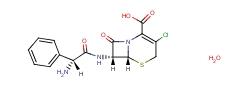 Cefaclor Monohydrate 70356-03-5
