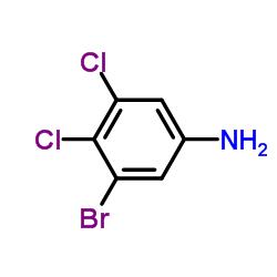 3-溴-4,5-二氯苯胺 36406-91-4