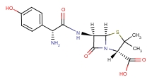 26787-78-0 Amoxicillin