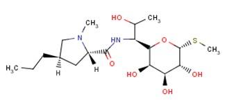 154-21-2;17017-22-0 Lincomycin