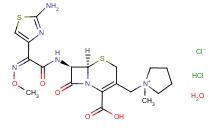 一水合头孢吡肟盐酸盐 123171-59-5;647035-01-6