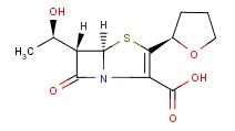 Faropenem Sodium 106560-14-9