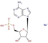 Adenosine 5'-monophosphate monosodium salt 13474-03-8