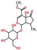 50816-24-5 hastatoside