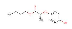 (R)-(+)-2-(4-羟基苯氧基)丙酸丁酯 87129-32-6