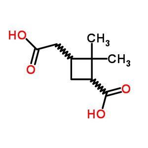 473-73-4;28664-02-0 3-(carboxymethyl)-2,2-dimethylcyclobutanecarboxylic acid
