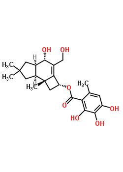 96571-13-0 (2R,4S,4aR,7aS,7bR)-4-hydroxy-3-(hydroxymethyl)-6,6,7b-trimethyl-2,4,4a,5,6,7,7a,7b-octahydro-1H-cyclobuta[e]inden-2-yl 2,3,4-trihydroxy-6-methylbenzoate