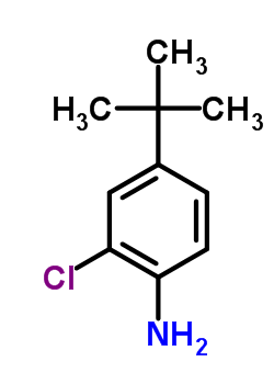 42265-67-8 4-tert-butyl-2-chloroaniline