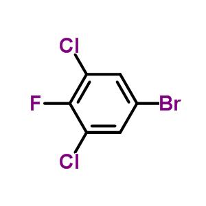 3,5-二氯-4-氟溴苯 17318-08-0