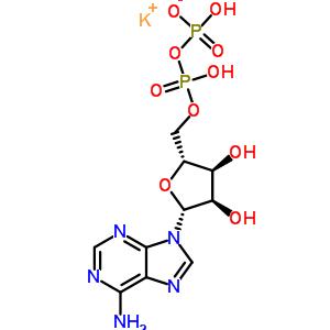 Adenosine 5'-diphosphate monopotassium salt 72696-48-1