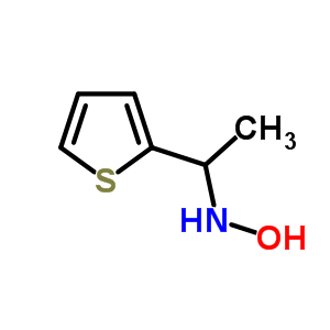 904818-25-3 N-[1-(2-thienyl)ethyl]hydroxylamine