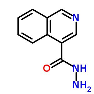 885272-60-6 isoquinoline-4-carbohydrazide
