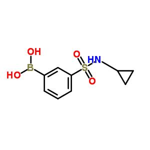 913835-28-6 [3-(cyclopropylsulfamoyl)phenyl]boronic acid