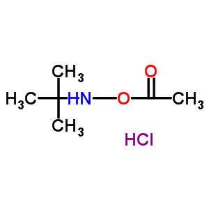 851074-40-3 (tert-butylamino) acetate hydrochloride
