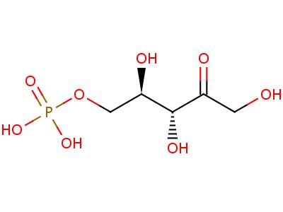 4151-19-3 5-O-phosphono-D-ribulose
