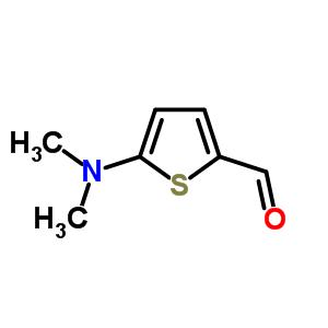5-二甲氨基噻吩-2-甲醛 24372-46-1