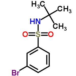 N-叔丁基-3-溴苯磺酰胺 308283-47-8
