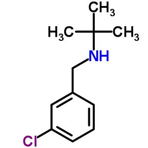 N-(3-氯苄基)叔丁基胺 893577-81-6