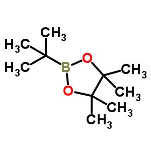 99810-76-1 2-tert-butyl-4,4,5,5-tetramethyl-1,3,2-dioxaborolane