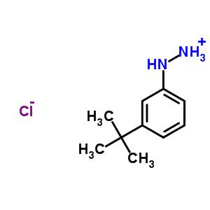 306937-27-9 (3-tert-butylphenyl)diazanium chloride