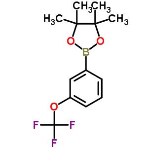 262376-31-8 4,4,5,5-tetramethyl-2-[3-(trifluoromethoxy)phenyl]-1,3,2-dioxaborolane
