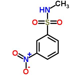 58955-78-5 N-methyl-3-nitrobenzenesulfonamide