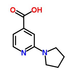 98088-04-1 2-pyrrolidin-1-ylpyridine-4-carboxylic acid