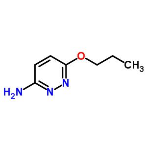 90008-50-7 6-propoxypyridazin-3-amine