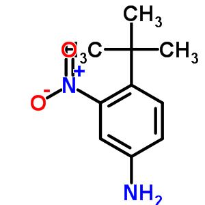 3-硝基-4-叔丁基苯胺 31951-12-9;6310-20-9